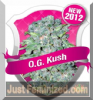 Royal Queen OG Kush Female 10 Marijuana Seeds